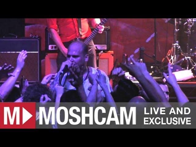 the-bronx-pleasure-seekers-live-in-sydney-moshcam-moshcam