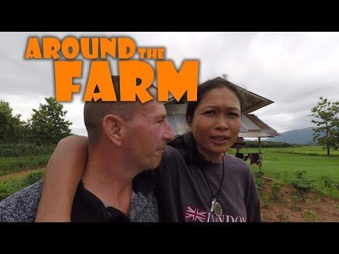 Around the Farm, Pond Progress and Growing Food