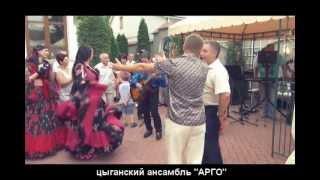 Жених поёт на свадьбе с цыганским ансамблем Арго