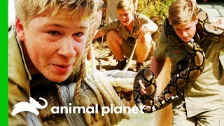 Robert Irwin's Best Moments From Season 2 | Crikey! It's The Irwins