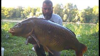 32 kg Sazan balığı kepceye sigmadi