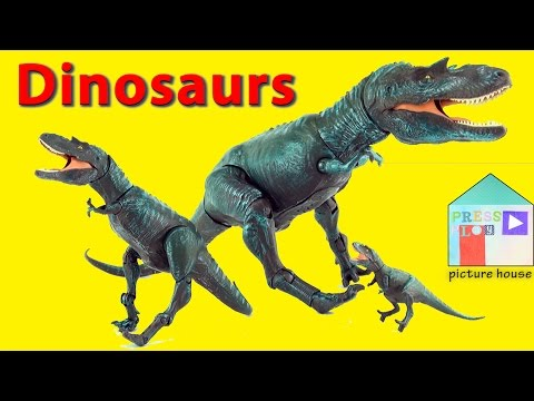 Learn Sizes with Dinosaurs Gorgosaurus. Learning Little, Medium and Big with scary dinosaurs
