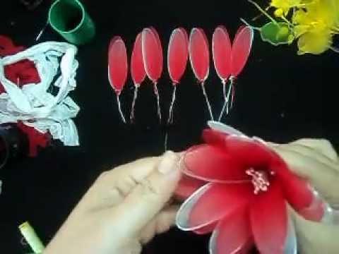 hoa voan cánh đôi