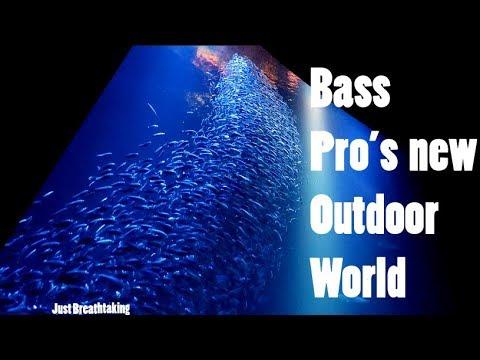Bass Pro's Brand New Award Winning OUTDOOR WORLD visit