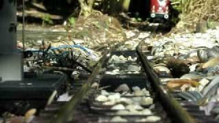 trein die tegen camera aan rijd
