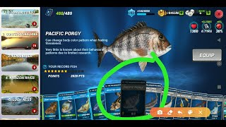 Fishing clash - H๐w to catch bigger new common fish without lure