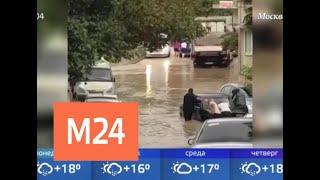 Синоптик рассказал о погоде в городе в ближайшее время - Москва 24