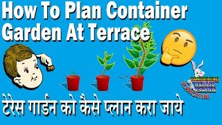 How To Plan Container Garden [ HINDI ]