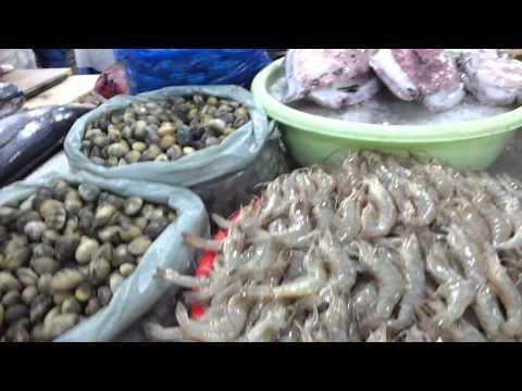 Visit to the Dubai Fish Market, UAE. 21.12.2012