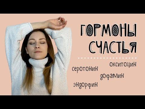 Лимбический мозг человека и гормоны счастья (дофамин, эндорфин, окситоцин, серотонин)
