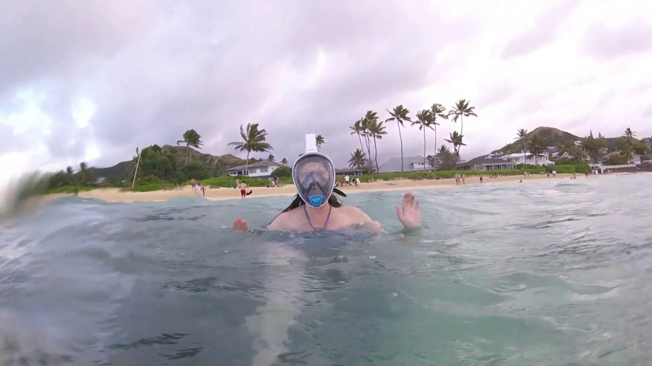 Lanikai Beach Snorkeling In Oahu Youtube