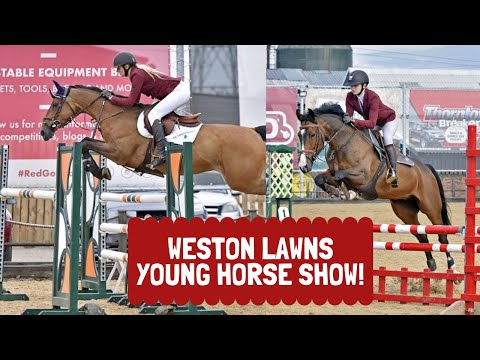 WESTON LAWNS YOUNG HORSE SHOW! - Ryans First 5yo Classes😱