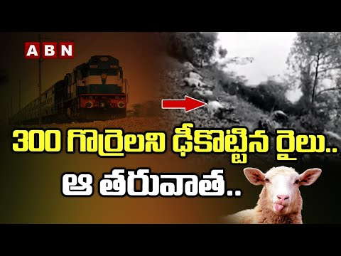Train Hits 300 A flock of Sheep    300 గొర్రెలని ఢీకొట్టిన రైలు..ఆ తరువాత..    Nizamabad Dist    ABN teluguvoice
