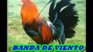 MUSICA HUASTECA,BANDA DE VIENTO ESTRELLA...
