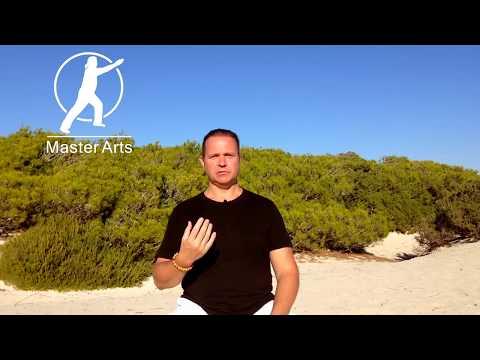 Tai Chi Inspiration - Die Essenz des Wave Tai Chi