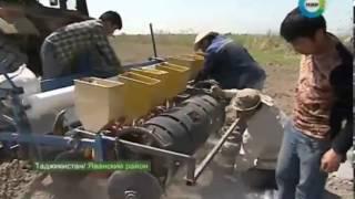 На полях Таджикистана апробируют новые технологии из Китая