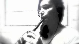 My Heart Will Go On - Titanic Tin Whistle Cover