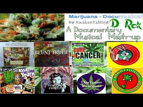 Cannabis Documentary Mash-up  - The Marijuana Documusical re-uploaded in 432Hz