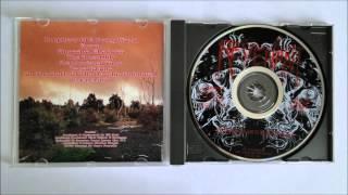 Revenant - Ancestral Shadows