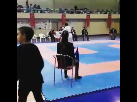 Okullar arası minik /yıldızlar karate müsabakası rojbin Yalçın
