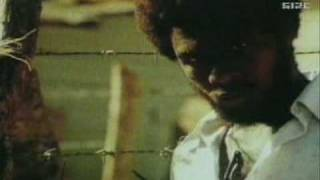 Bob Marley Feat. Funkstar Deluxe - The Sun is Shining