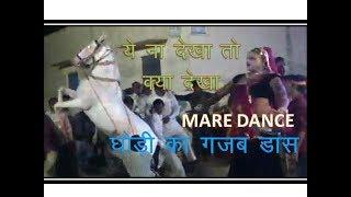 HORSE DANCE | ghori dance | RAJASTHANI DANCE | GAZAB DANCE