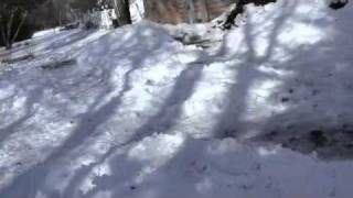 My Back Yard Snow Forts (war Grounds)