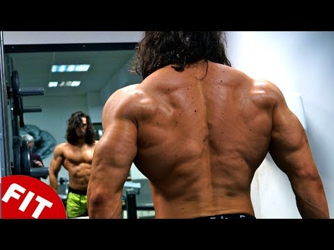 PERFECT BACK WORKOUT