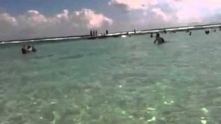 part 1 feeding fish in Tulum  mexico at the beach Gran Bahia Principe Coba Thumbnail