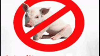 Dr Mohamed El Faid : le cochon