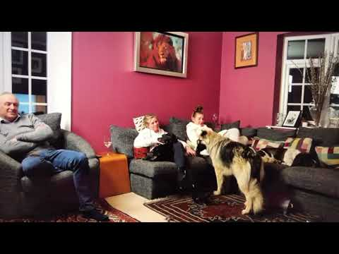 The Keebles Watch Themselves on The Job Interview - Tune into Gogglebox 23 February!