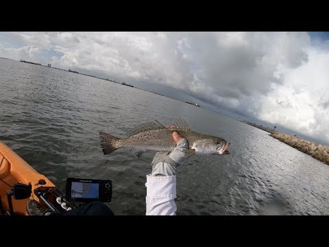Speckled Trout Before The Cold Front, Kayak Fishing Texas