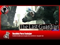 The Last Guardian   Vestido para festejar