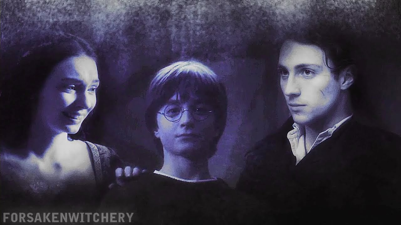 Lost in Another World, In honor of the final Harry Potter ...  Lily And James Potter In The Mirror