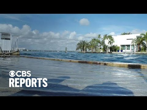 Rising Tide: Priced Out In Miami | Full Documentary