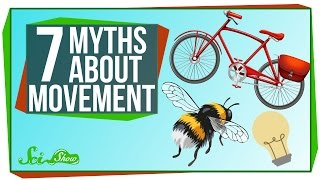 Download 7 Myths About Movement Mp3 and Videos
