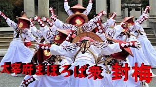 太宰府まほろば衆 封梅さん 2014 ふくこいアジア祭り
