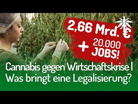 cannabis-gegen-wirtschaftskrise-|-was-bringt-eine-legalisierung?