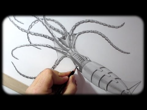 Robot Squid Wildlife Drawing Timelapse YouTube