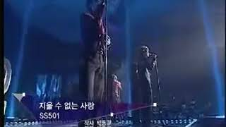 Ss501  love that cant be erased caja musical