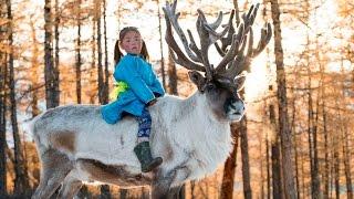 Цаатаны: исчезающее племя Монголии