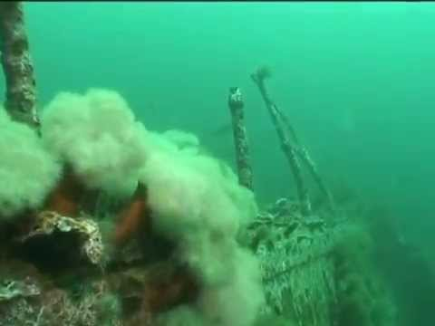 Ship Wrecks  | Wreck Diving in Newfoundland, Canada