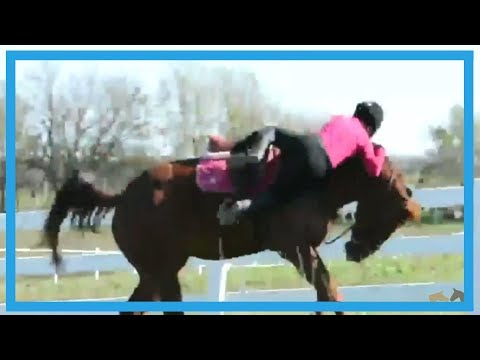 Paarden bloopers | Horse fails