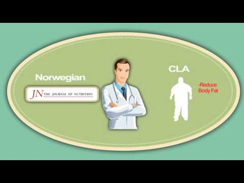 How Conjugated Linoleic Acid Cla Works In Your Body