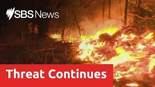 New bush fire emergency warnings issued in Queensland and northern NSW