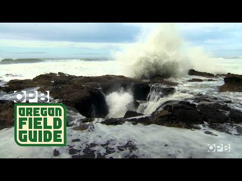OFG Nature Break: Spouting Horn and Thors Well