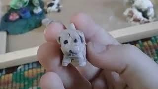 Поделки из пластилина Животные СОБАКА, МОРСКОЙ КОТИК, СВИНКА, КОШКА