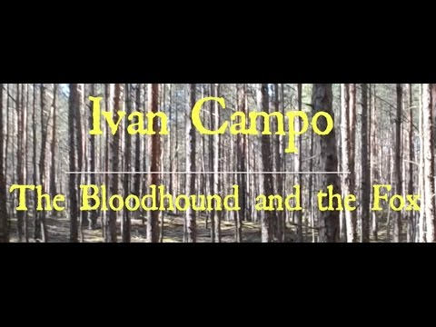 Ivan Campo - The Bloodhound and the Fox (Lyric Video)