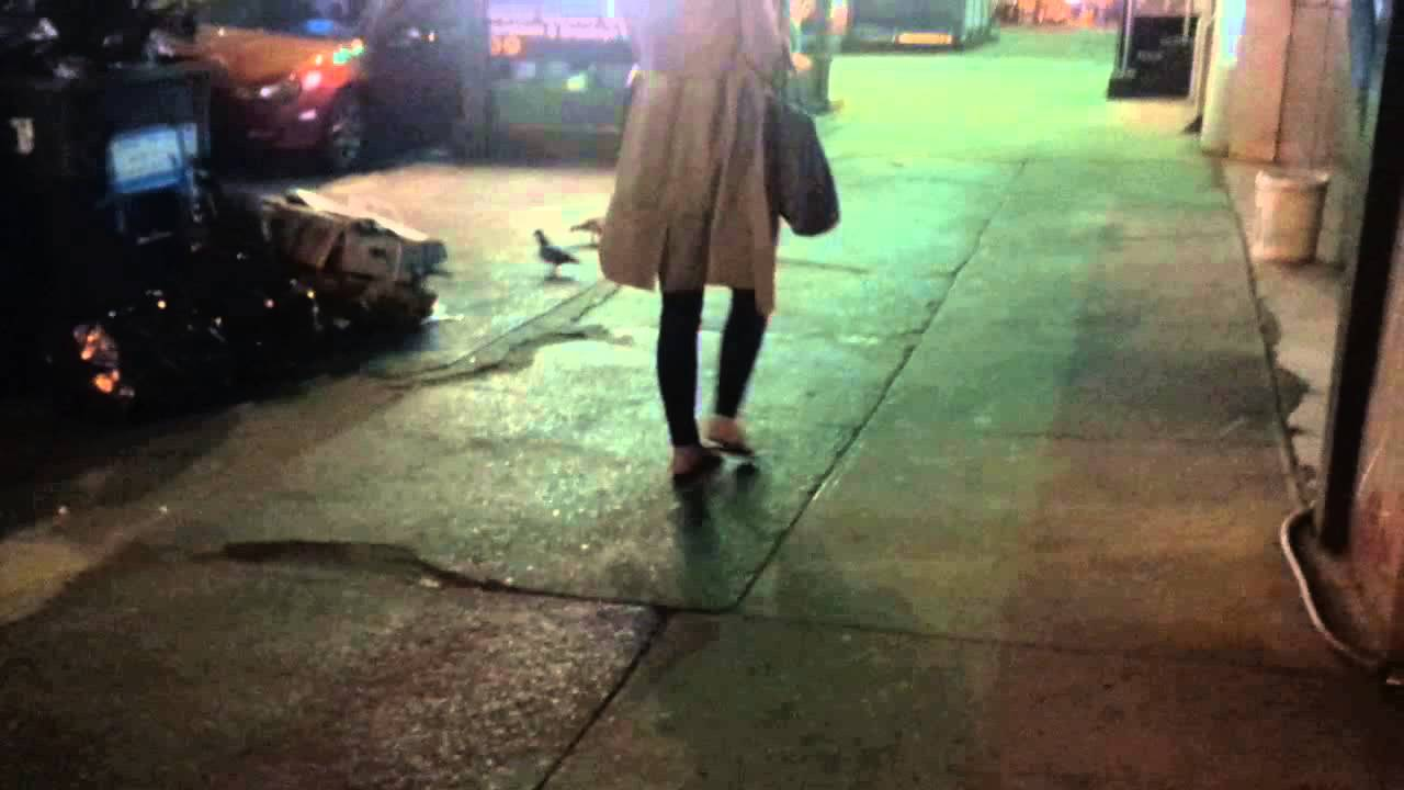 Rats of New York - Just another day in New York City - NYC - YouTube