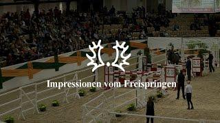 Impressionen vom Freispringen - Trakehner Hengstmarkt 2014